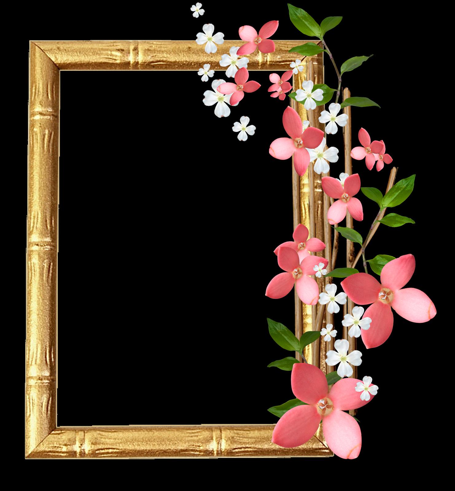 Marcos gratis para fotos marcos para fotos png florales - Marco 4 fotos ...