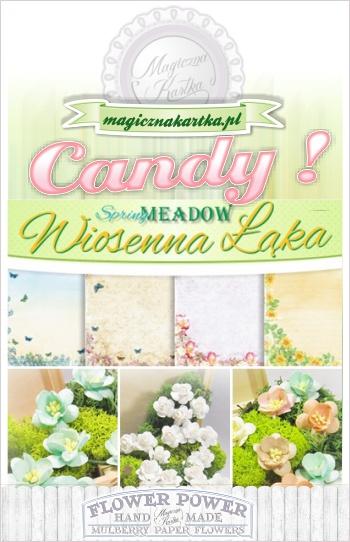 http://magicznakartka.blogspot.com/2014/03/wiosna-zapukaa-do-magicznej-kartki.html