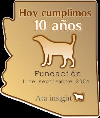 10 años ata insight