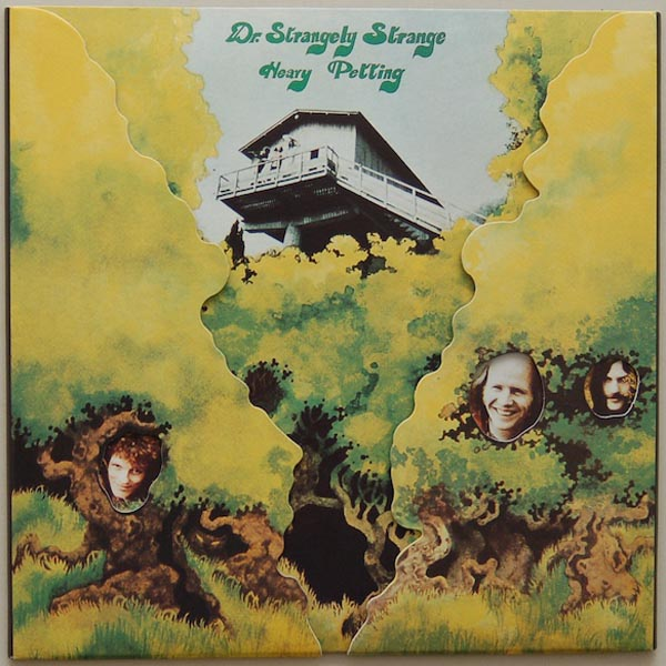 Dr. Strangely Strange - Heavy Petting album cover
