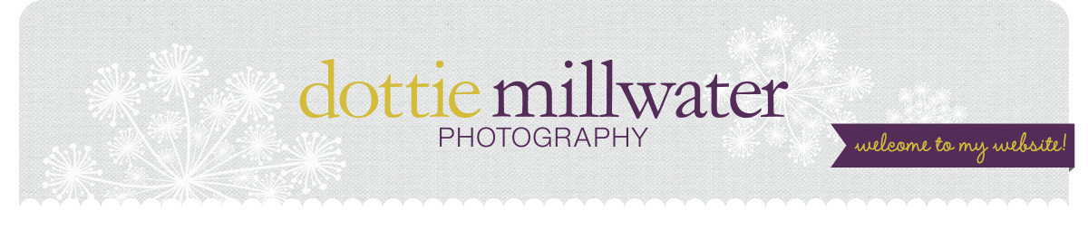 Dottie Millwater Photography