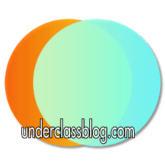 Polarr Photo Editor Pro 1.0 APK