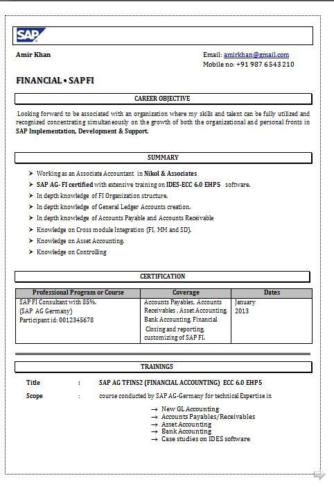 Dynamic Resume: Resume Format for SAP FICO