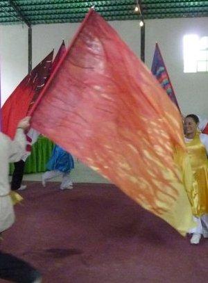 Bandera profética Fuego Santo