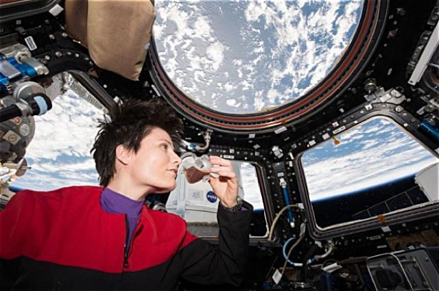 a day in zero gravity essay