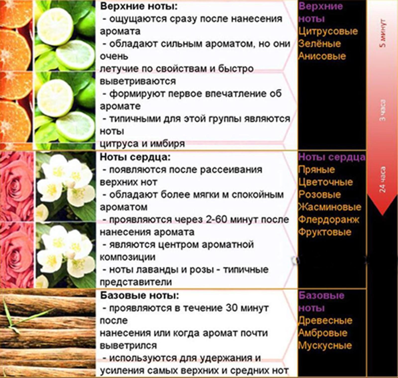 Составление духов из эфирных масел рецепты