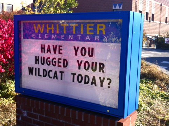 Street Feet: Have You Hugged Your Wildcat?