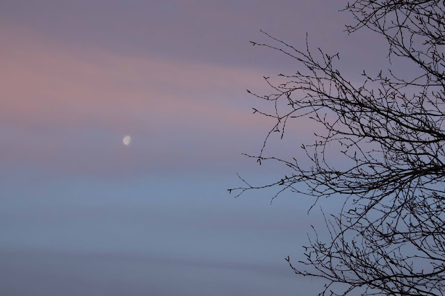 layered sky with moon