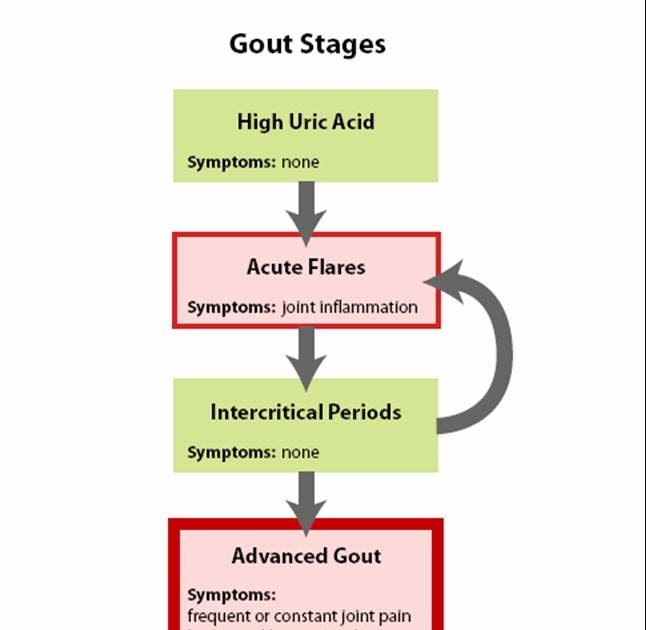 manifestasi klinis gout arthritis foods to eat with low uric acid impact of high uric acid in blood