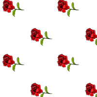 free red white rose paper