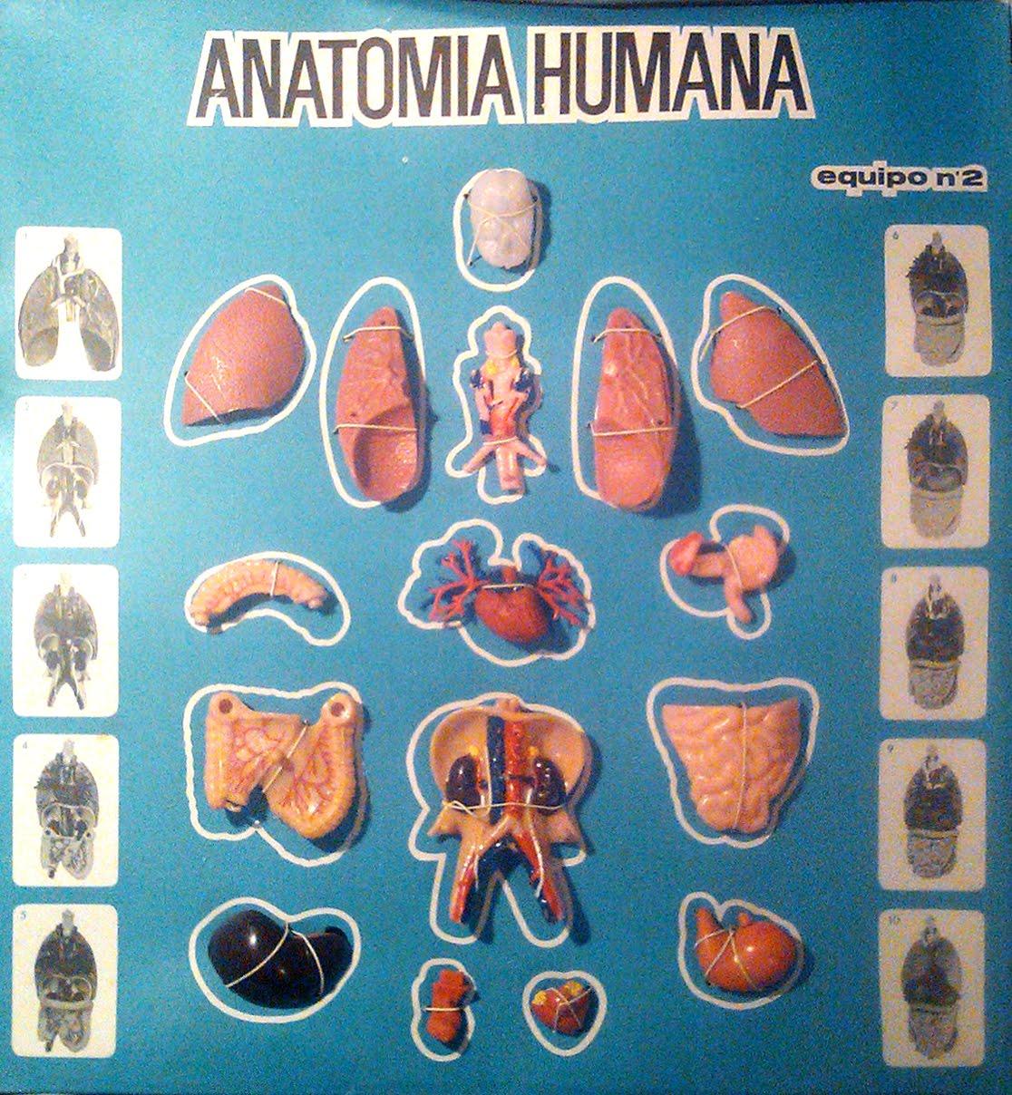 Los años 70: Anatomía Humana de SERIMA
