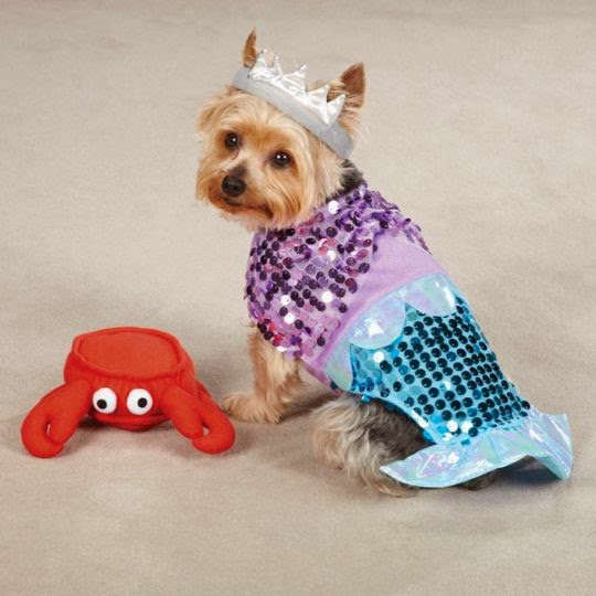 sparkly mermaid dog costume