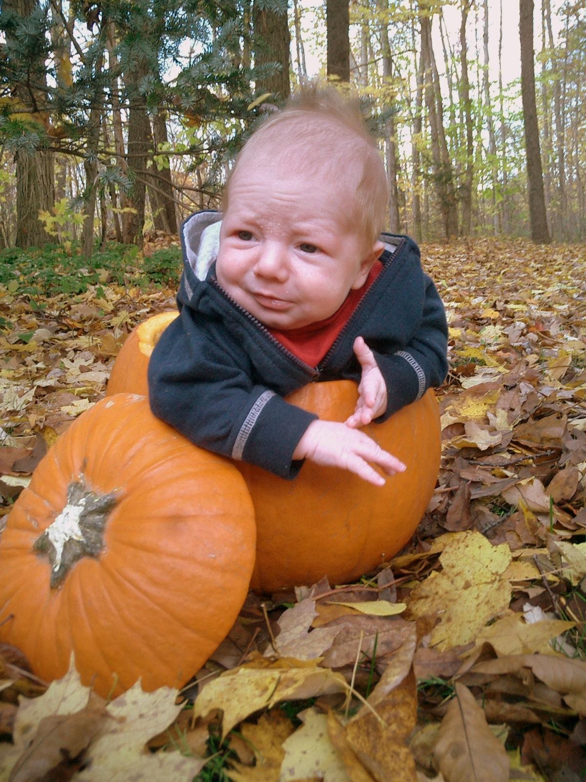 Fall Photo Shoot Ideas For Babies Pumpkins   fall photo ideaFall Photo Shoot Ideas For Babies