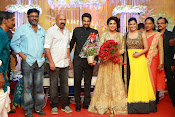 Amala paul vijay reception-thumbnail-24