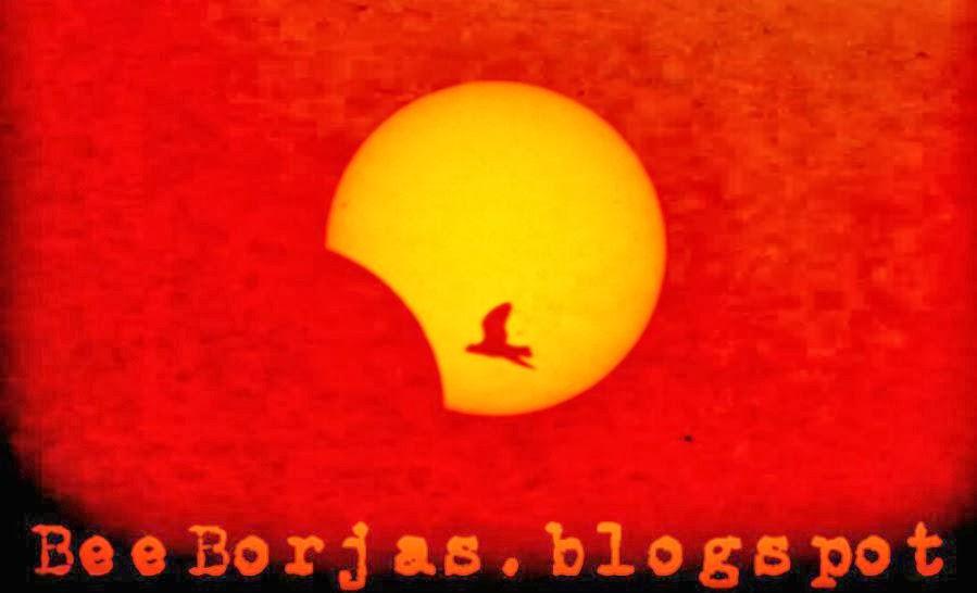 BeeBorjasblogspot