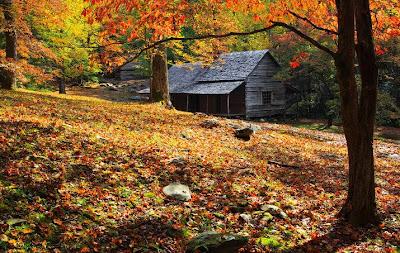 fotografías gratis de paisajes naturales - Disfrútalos