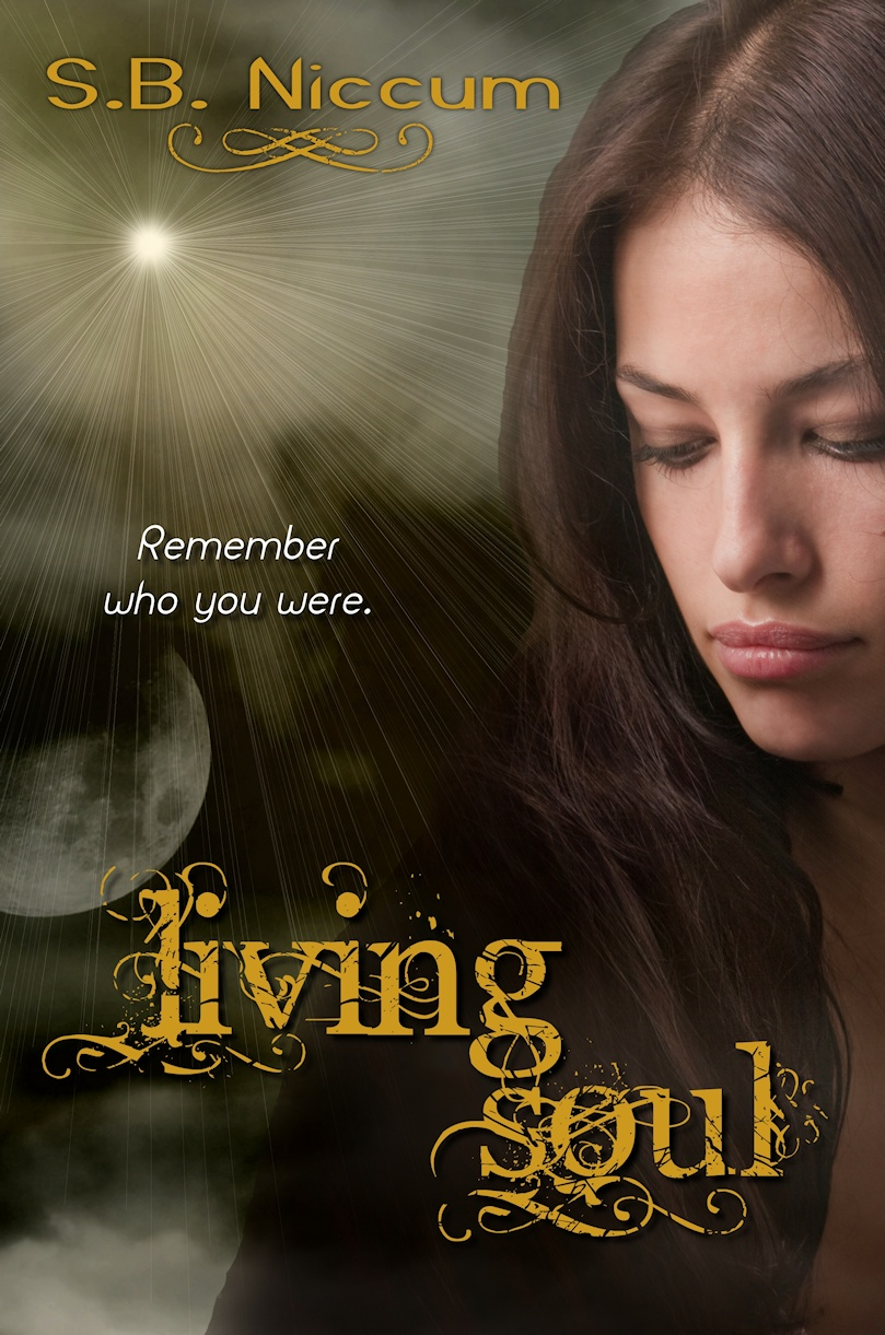 Living Soul : The Real Life of Fiction : Young Adult Giveaway Hop