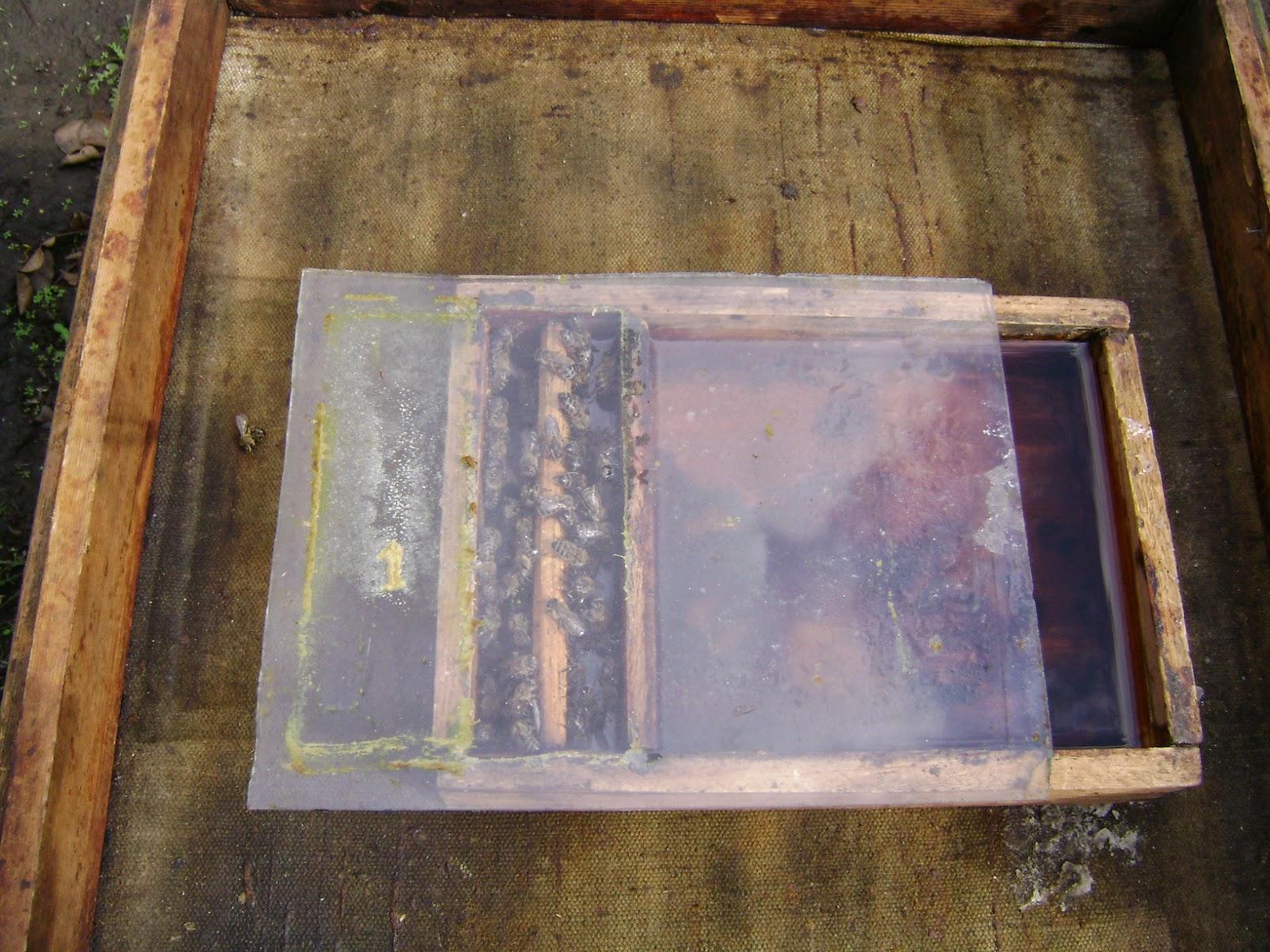 Кормушка внутриульевая для пчел