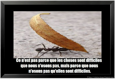 Citation difficile en image