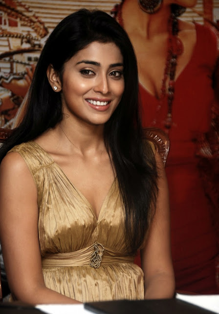 lvoj013ixzret4pmu19 Actress Shriya Saran Photo Gallery