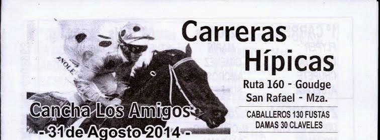 http://turfdelapatagonia.blogspot.com.ar/2014/08/3108-programa-de-carreras-de-caballos.html