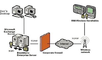 Black Berry Technology