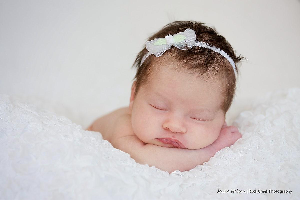 Twin Falls, Magic Valley, Kimberly, Idaho, newborn photographer