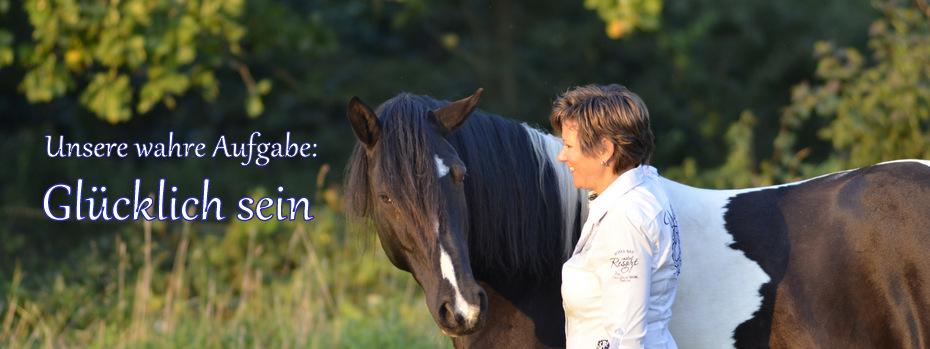 Aufstellungen für Pferd und Mensch