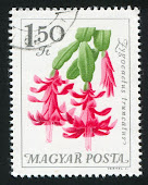Stamp from Hungary