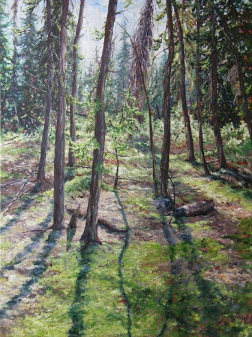 Wagner Spruce Forest