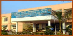National Research Centre on Litchi Recruitment 2014 Young Professionals I, II – 12 Posts