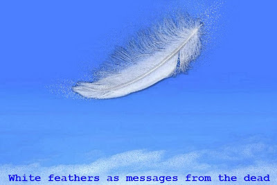 White feathers as messages from the dead