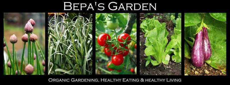 Bepa's Garden
