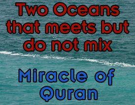 two seas meet but dont mix quran with urdu