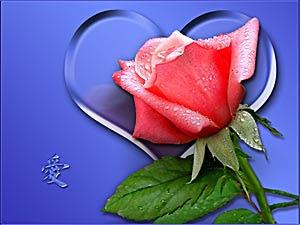 http://3.bp.blogspot.com/-LFHWo_oLTGQ/Tebv4yqTNXI/AAAAAAAAAJM/4iCHq7Fl7Xc/s1600/Nature+www.telugu-wallpaper.blogspot.com+%2528106%2529.JPG