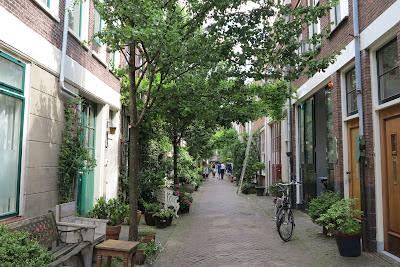 container garden, flowers, Haafner, Haarlem, urban gardens