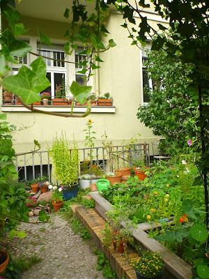 Balkon und Vorgarten mit Töpfen und Beeten, das ganze durch ein umranktes Tor hindurch fotografiert.
