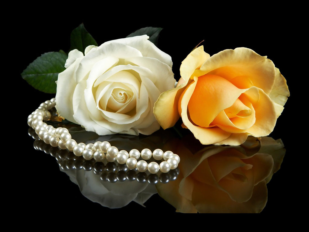 roses and pearls - photo #7