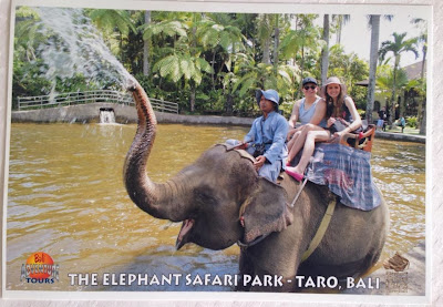 Elephant Safari Park Taro Bali Review - Ride an Elephant