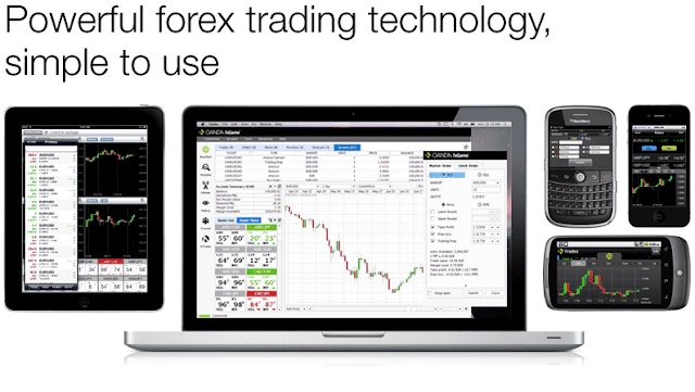 Junior forex trader