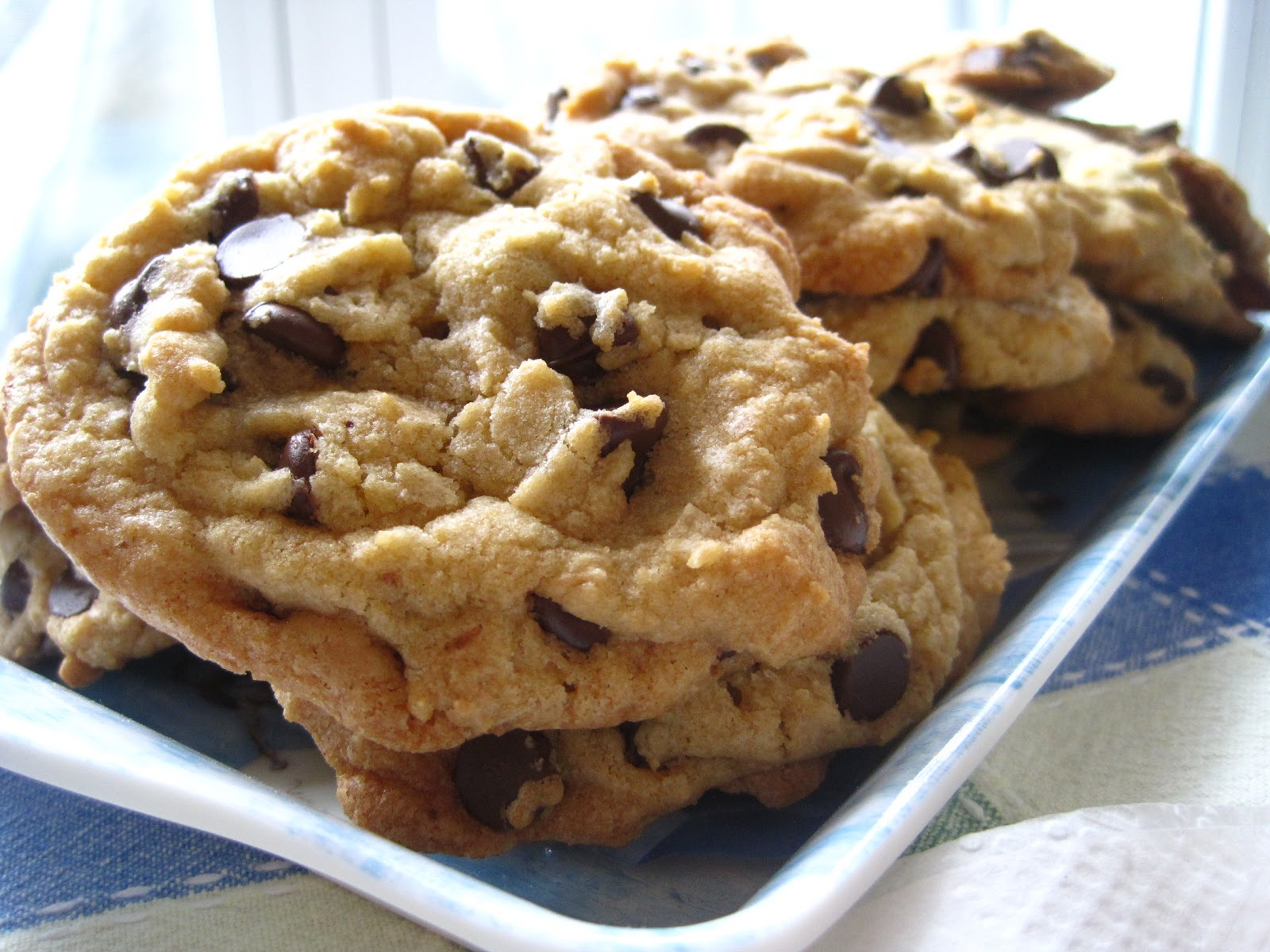 Alissamay's: Big, Fat, Chewy Chocolate Chip Cookies