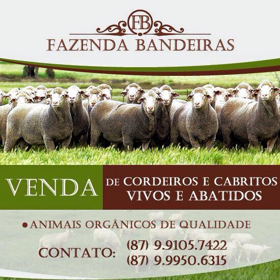 FAZENDA BANDEIRAS
