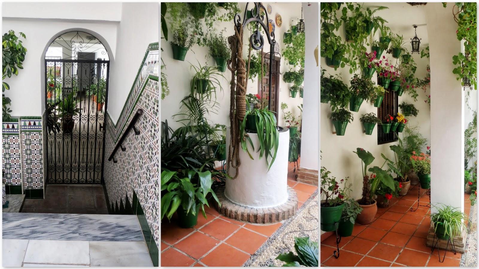 Las im genes que yo veo c rdoba los patios de c rdoba for Patios antiguos decoracion