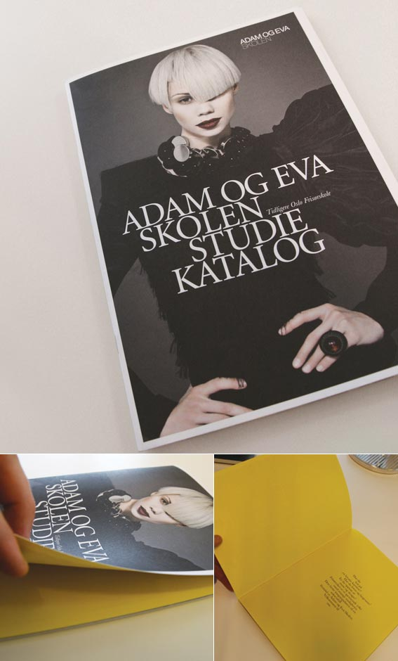 20 stylish examples of salon brochure designs jayce o yesta for Adam and eve salon