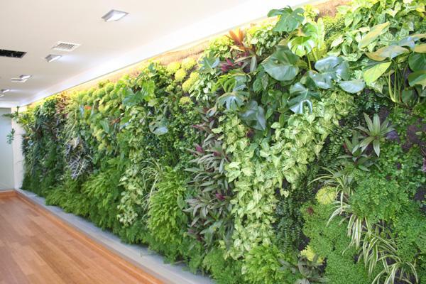 Jardines verticales y muros verdes ies heliche abril 2012 for Materiales para jardines verticales