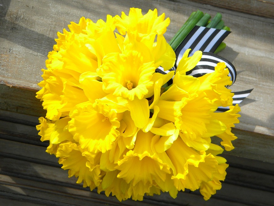 So Here Are Some Two Very Different Daffodil Bouquets For Weddings In March Or Early April