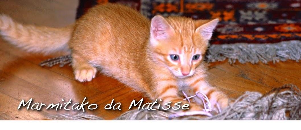 Marmitako da Matisse