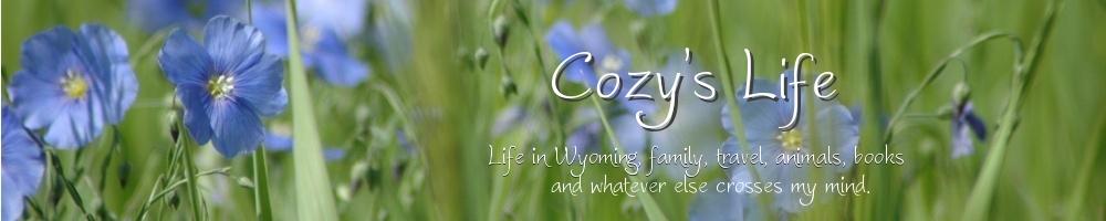 A Cozy Life