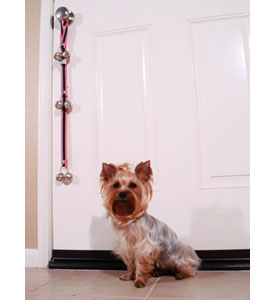 """The Upper Paw: Let's Get This """"Potty"""" Started! Tips on potty training"""