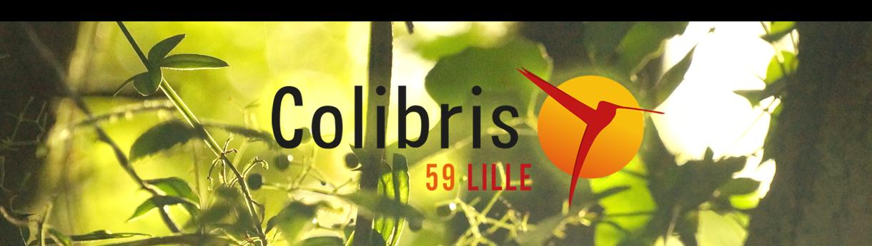 Colibris Lille